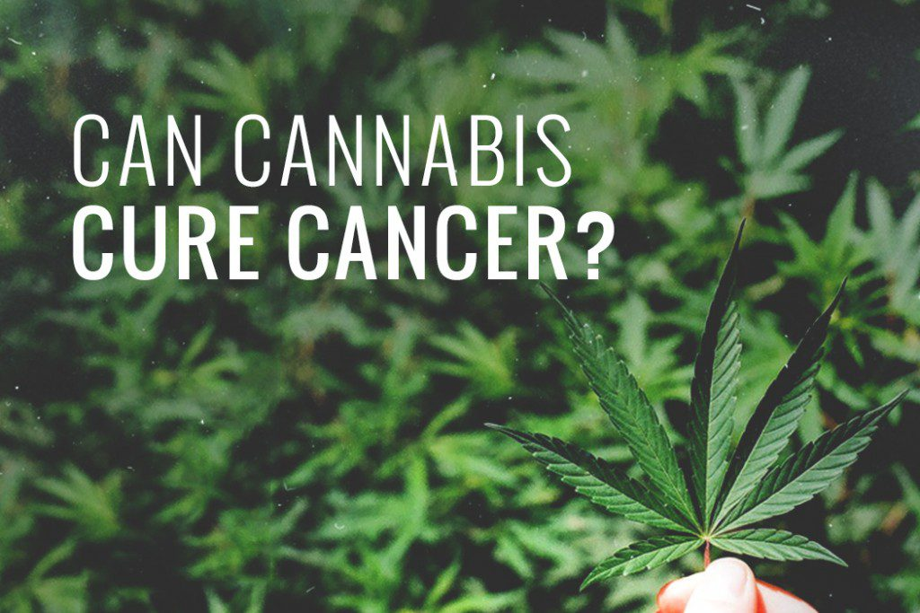 The Science Behind How Medical Marijuana Can Help Cancer Patients